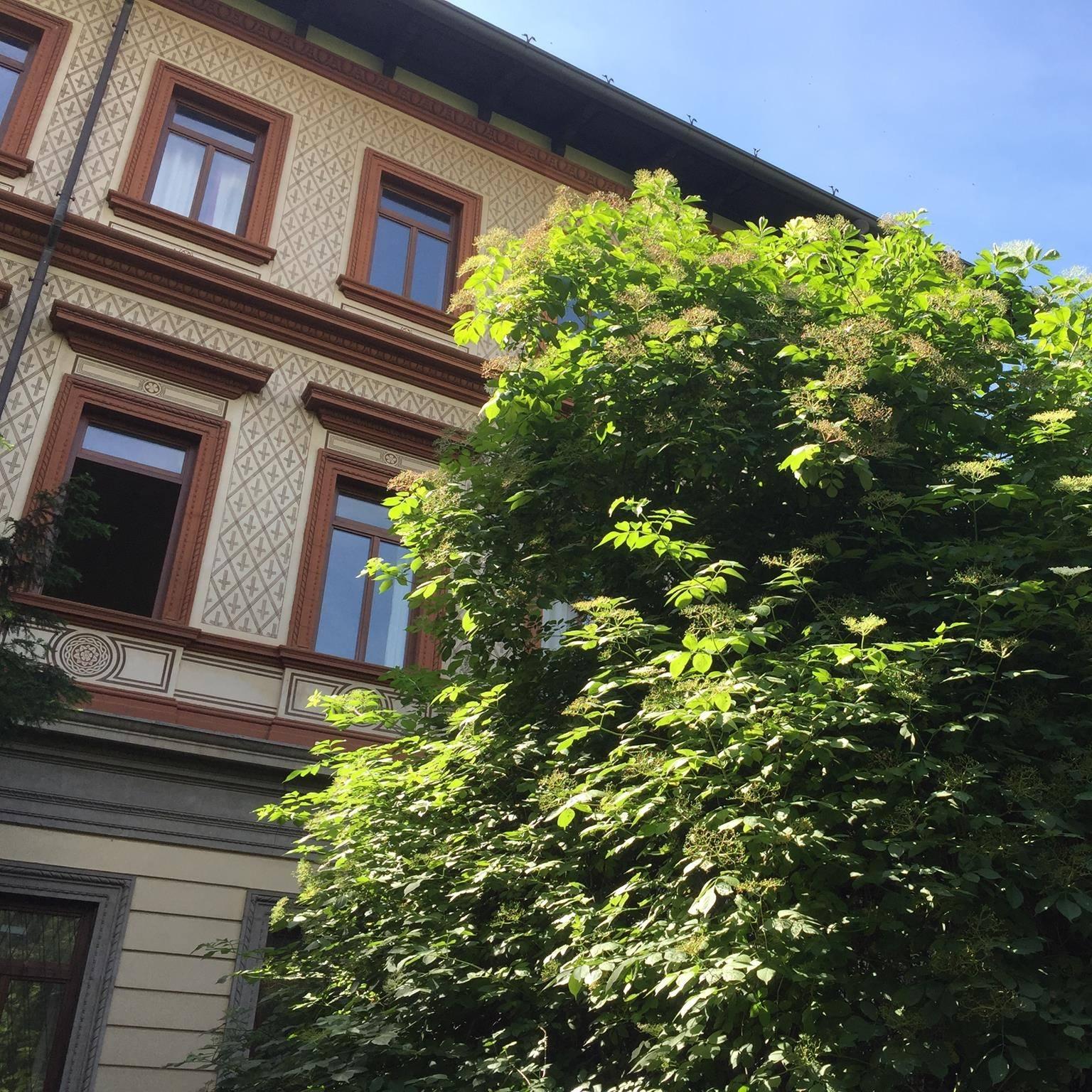 Milano, Liceo Manzoni: stop alla ammissione solo dei bravi e ricchi